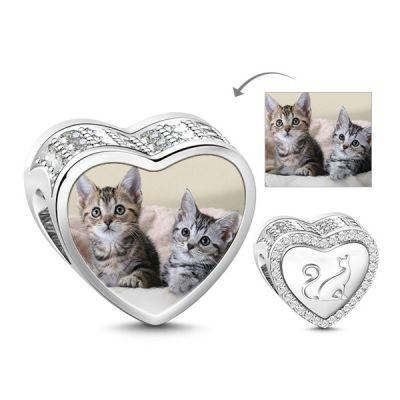 Katze in meinem Leben
