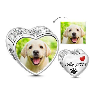 Süße Erinnerung an meinen Mops / Welpen / Hund