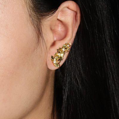 Ohrkletterer Schmetterling Gold